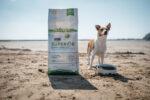 Karma dla szczeniaka Fish4Dogs Superior Puppy Complete z Łososia