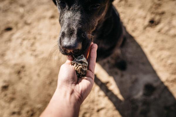 Przysmaki dla psa Fish4Dogs Sea Jerky Squares