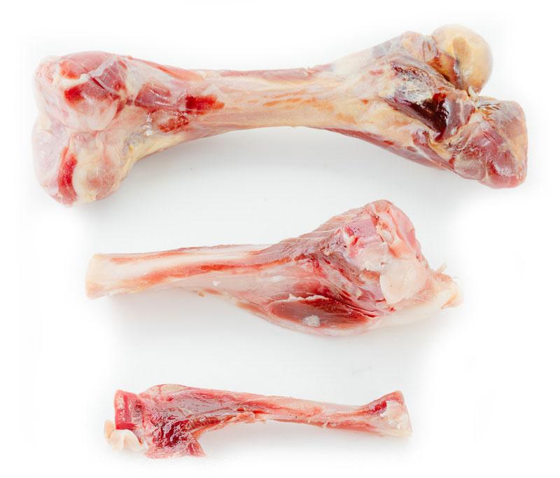 Przysmaki dla psa Prosciutto Bone - Kość z szynki Parmeńskiej