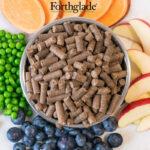 Karma dla psa Forthglade Kaczka z Warzywami