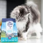 Karma dla kota Ziwi Peak Mackerel&Lamb - Makrela i Jagnięcina