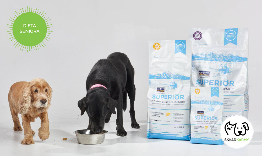 Dieta dla psa seniora